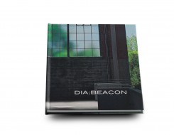 dia_beacon_cover
